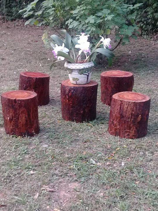 Troncos para adorno de jard n lelox verdun - Troncos para jardin ...
