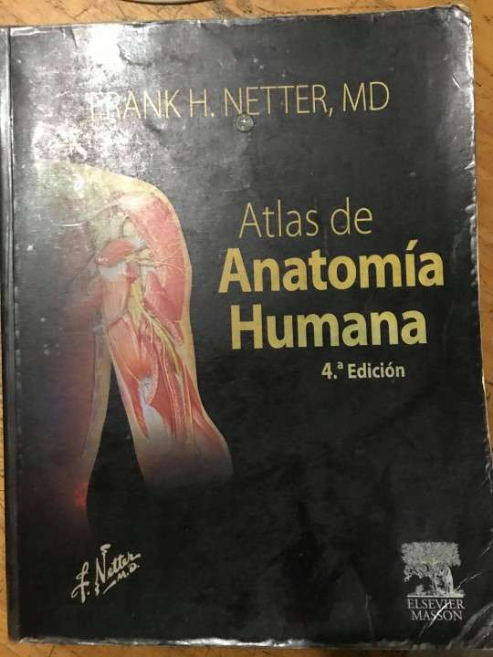 Atlas de Anatomia Frank Netter - Ivonne- Hendyla.com
