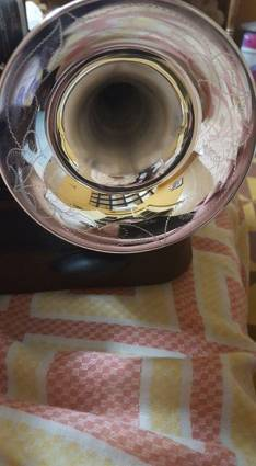 Trompeta profesional