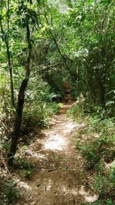 Turismo al Parque nacional Ybycui