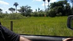Terrenos en Capiatá Km 18 Ruta 2