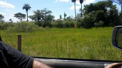 Terrenos en Capiatá Ruta 2 km 18 salinares