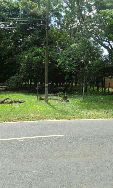 Terreno 13x44 en Nueva Colombia