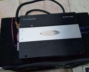 Caja de sonido con amplificador Pioneer