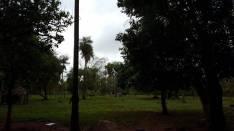 Hectáreas en Itaugua