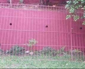 Portón y reja