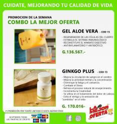 KIT anti estres Gel de Aloe Vera y Ginkgo plus