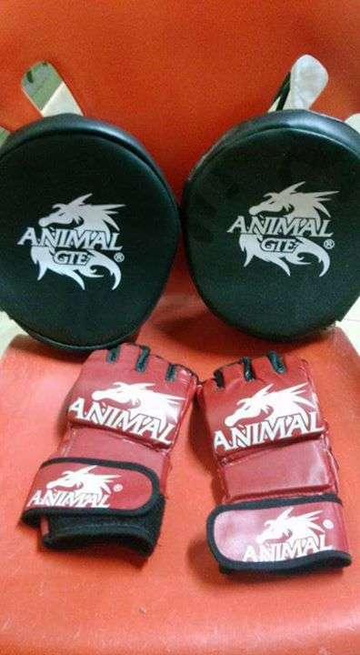 Manillas y guantes de mma para entrenamiento