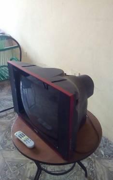 TV Mast de 21 pulgadas con control