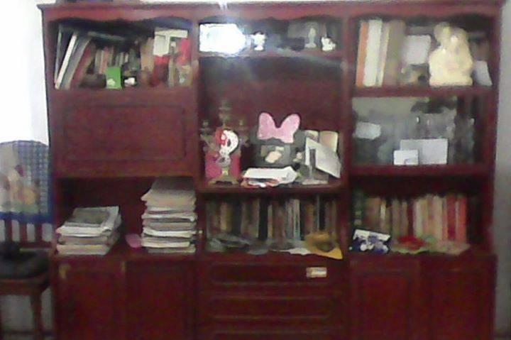 Mueble de madera para sala   lalita  hendyla.com