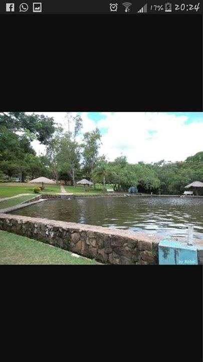 Gran Paseo a Chololo Domingo 22