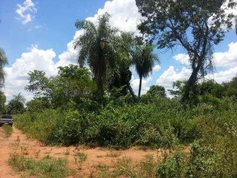 Terrenos juntos en Ypané 720 m2