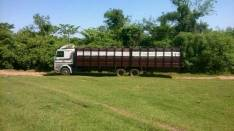 Carrocería para transganado doble eje de 11 metros