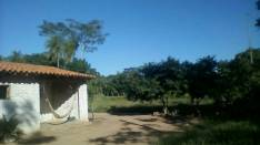 Casa con cultivos
