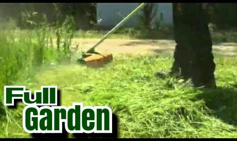 Servicio de jardineria emma c for Servicio de jardineria df