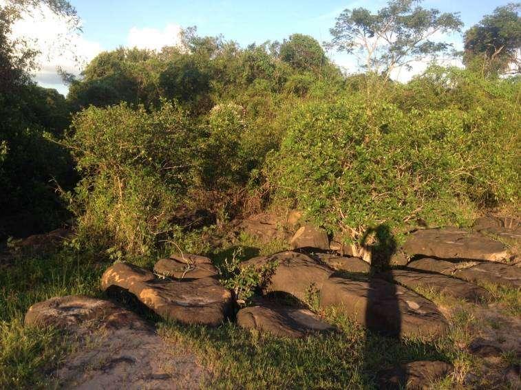 Terrenos en Arroyos y Estero a orillas del Rio Yhaguy - 4