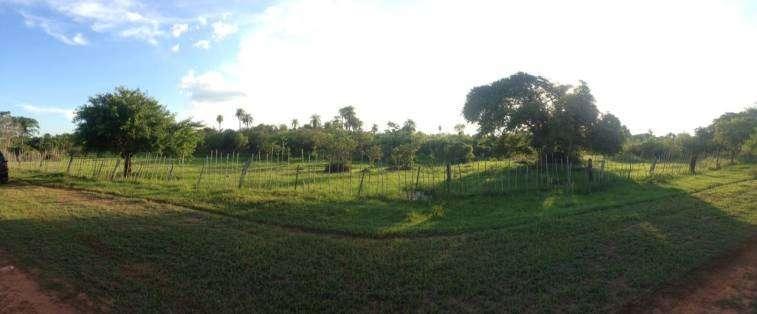 Terrenos en Arroyos y Estero a orillas del Rio Yhaguy - 1
