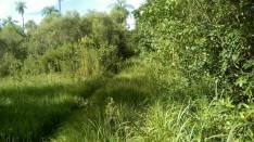 Terreno en Aregua