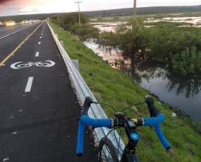 Bicicleta Rutera Giant Anyroad
