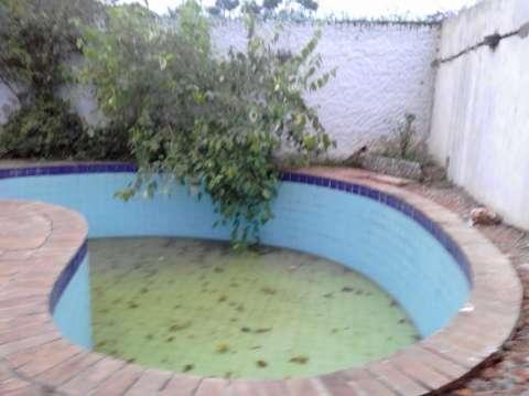 Limpieza y mantenimiento de piscina - 1