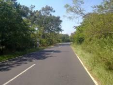 Terreno de 3.5 Hectáreas sobre Ruta Emboscada a Nueva Colombia