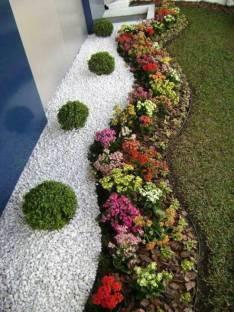 Servicio de jardineria, empastado, limpieza