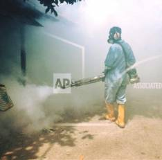 Fumigación y Pulverización para todo tipos de plagas