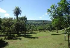 Quinta de 5 hectareas en Mbatovi