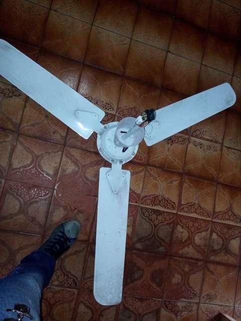 Ventilador de techo con luz narci - Ventilador techo ...