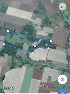 Campo de 39 hectáreas