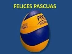 Escuela de volley
