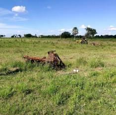 Campo de 40 hectáreas