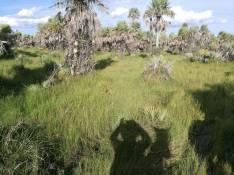 Terreno de 6 hectáreas en Itacurubí de la Cordillera