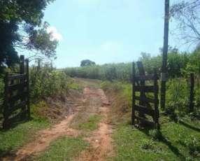 10 hectáreas especial para engorde de ganado