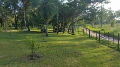 Granja formada en Loma Grande 7.5 hectáreas