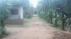 Terreno de 28 hectáreas con 3 casas y animales