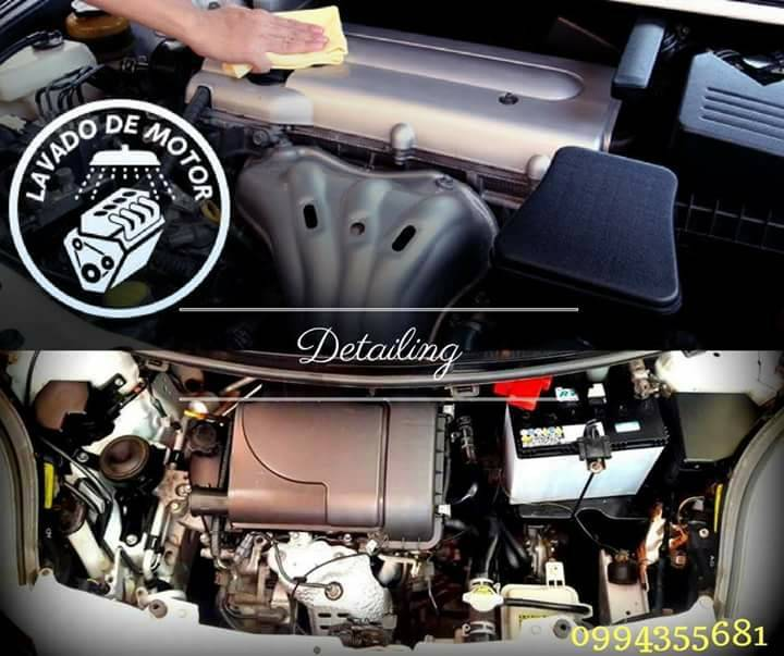 Limpieza de motor a seco luchocodas id 339049 - Limpieza en seco en casa ...