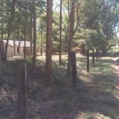 Casa 5ta de 4 hectáreas full con río