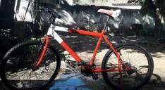 Bicicleta Milano-Action