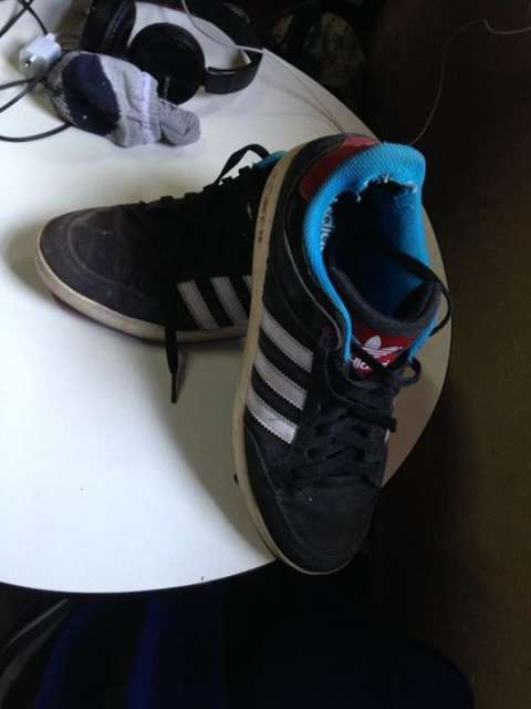 Champion Adidas calce 8 1/2