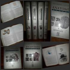 Anatomía de Rouviere los 4 tomos