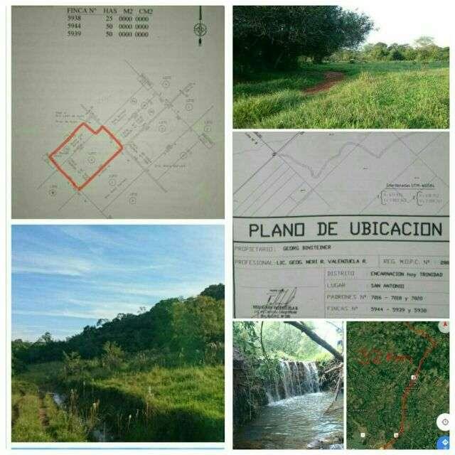 71 hectáreas de campo