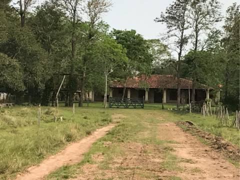 Campo Mbujapey