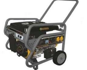 Generador de corriente Forest & Garden GG-9335 3100W 220V naftero