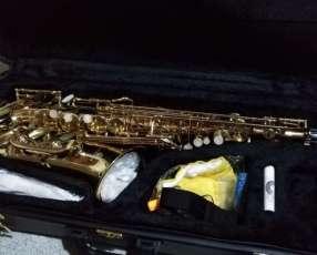 Saxofón alto Rivertone