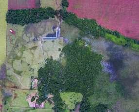 27 hectáreas en Hernandarias