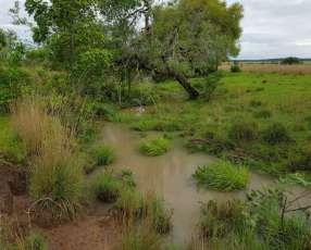 12 hectáreas en Emboscada