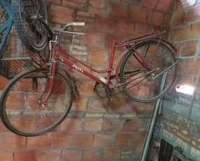 Bicicleta para decoración