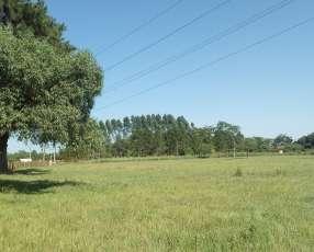 Terreno de 20 hectáreas en Itacurubí