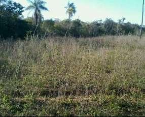 Terreno 4 hectaras de terreno en piribebuy